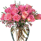 Sweet Treat Dozen Pink Roses