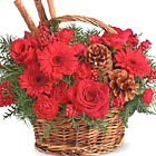 Share the warmth and color of the season with this charming basket bouquet of rich red roses, Gerbera daisies, carnations, fresh pine, and natural accents. Timeless! Available after Thanksgiving through December. USA and Canada florist delivery