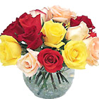 Stylish and sweet! A colorful assortment of garden-fresh rose blossoms in a compact 'nosegay' design that's great for a desk, vanity, bedside table, or almost anywhere! A loving way to say 'cheer up' 'thanks' or 'thinking of you.' Approx. 12 roses.