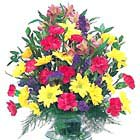 Bright and Cheery Vased Bouquet