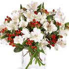 FTD® Winter Alstroemeria Bouquet