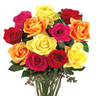 FTD Mixed Roses
