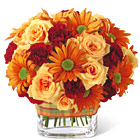 FTD Golden Autumn Bouquet (Autumn)