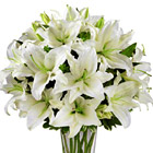 FTD� Spirited Grace Lily Bouquet