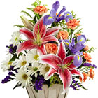 This popular basket bouquet features fresh Spring daisy poms, Oriental lilies, miniature carnations, statice, iris, or similar seasonal fresh flowers in soft pink, purple, white, and peach tones. Great for a thank you, Mother?s Day, feel better, or any thoughtful expression. USA and Canada florist delivery.