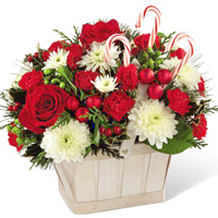 Shop for Flowers