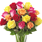 FTD� Bright Spark 18 Roses Bouquet