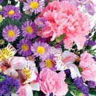 Pastel Flowers Bouquet Special