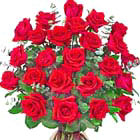 Stunning Two Dozen Roses Vased