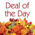 Deal of the Day Autumn Bouquet