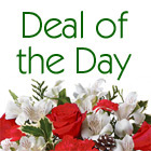 Deal of the Day Holiday Bouquet