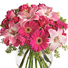 Make someone feel really special with this heartwarming combination of fresh lilies, roses, Gerbera daisies, and more in pretty pink and hot pink tones. It?s a knock-out! Great for a birthday, anniversary, Mother?s Day, or any thoughtful occasion. Florist designed and delivered in the USA and Canada.