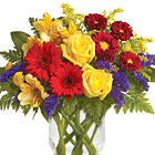 Say Thanks, Happy Birthday, Get Well, Congratulations, or Thinking of You with this striking combination of roses, Gerbera daisies, asters, alstroemeria, button poms, statice, solidago, or similar fresh blooms, in bold primary colors that are great for both guys and gals, too. A top pick for almost any occasion! Same day and next day florist delivery in the USA and Canada.