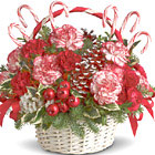 Say 'Happy Holidays' to friends and loved ones near or far with this charming Christmas bouquet featuring hearty standard and spray carnations, pine cones, berries, and bows, designed with fresh pine in a natural basket and trimmed with candy canes or similar Yuletide accents. Adorable! Available in most areas after Thanksgiving through December.
