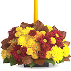 Share the warmth and beauty of the season with this festive centerpiece of fresh Fall flowers in rich Autumn hues crowned with a taper candle. A harvest of happiness! Available September through Thanksgiving. Approximately 10 to 12 inches in diameter. USA and Canada delivery.