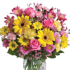 Dazzle someone on with this glorious celebration of pretty pink and yellow flowers designed and delivered in a stylish glass vase. Featured blooms include Gerbera daisies, roses, alstroemeria, asters, miniature carnations, or similar fresh seasonal favorites. A great way to send your very best to home or office for any happy occasion! USA and Canada florist delivery.