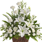 Peaceful White Lilies Basket (Sympathy)
