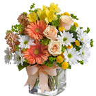 Teleflora� Walk in the Country Bouquet