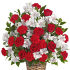 Express your sympathy and show how much you care with this stately red and white floral tribute featuring roses, carnations, alstroemeria, or similar fresh favorites, designed in a traditional funeral arrangement. Appropriate for wakes, funerals, and memorial services. Approximately 22 to 24 inches in height. USA and Canada florist delivery.