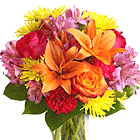Send smiles across miles for any summer or Autumn occasion with this cheery combination of fresh seasonal blooms in a welcome array of colors. Featured flowers include roses, lilies, alstroemeria, spray chrysanthemums, carnations, or similar fresh favorites. Great for a birthday, get well, thanks, feel better, or just because. Available in most areas September through November. USA and Canada florist delivery.