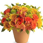 Season of Splendor Flowers Bouquet (Fall)