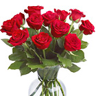 One dozen beautiful roses tastefully designed with fresh foliage in a quality glass vase and delivered fresh by our network of professional local florists. Available in most areas in red, pink, white, yellow, or assorted colors with same-day and next-day florist delivery throughout the USA and Canada.