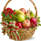 Warmest Wishes Holiday Fruit Basket