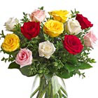 One Dozen Mixed Roses
