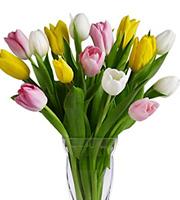 Spring Tulips Vase #TW406