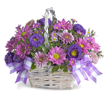 Daisy Daydreams Flowers Basket By 1800 Florals Florist