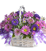 Daisy Daydreams Basket #TW639