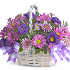 Lift someone?s spirits with this charming basket bouquet of fresh seasonal flowers in pretty shades of lavender. Great for a thank-you, Mother?s Day, feel better, or just thinking of you. Delightful! Professional florist design and delivery in the USA and Canada.