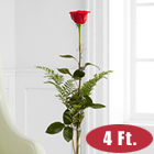 Single Red 4 Ft. Ultimate Rose with Vase