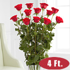 One Dozen Red 4 Ft. Roses with Vase