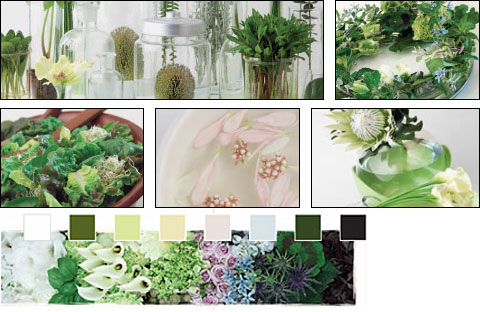 Flowers Trends - Hydroponic