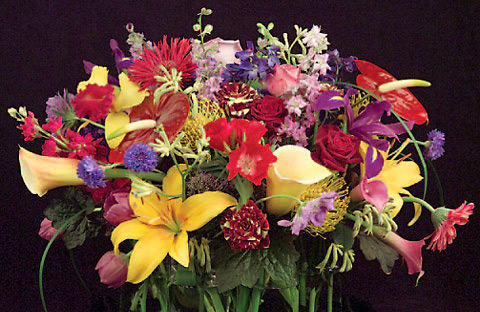 Flowers Trends - Profusion