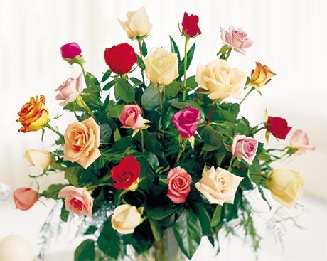 http://www.800florals.com/img/rosecol.jpg