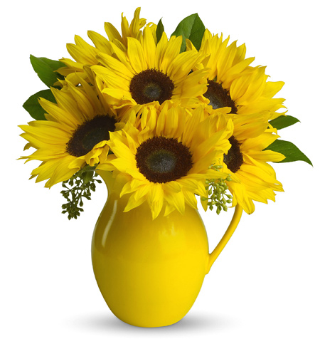 Sunflowr Pitcher eCard
