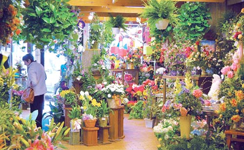 Flowers Hinsdale Phillip S Flowers Florist Shop In