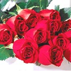 FTD® One Dozen Red Roses