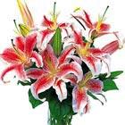Oriental Lilies Bouquet