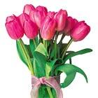 Tulip Cluster Bouquet