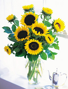 Vased Sunflowers Bouquet