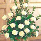 White Carnations Sympathy Tribute