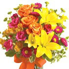 Celebration of Color Bouquet