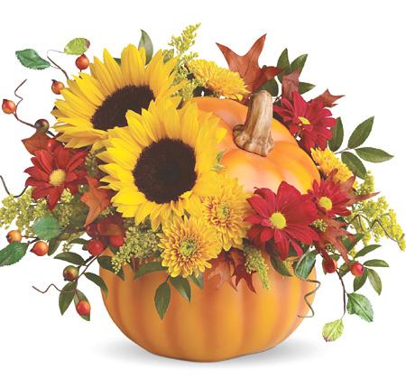 1-800-FLORALS coupon: Pretty Pumpkin Bouquet at 1-800-Florals