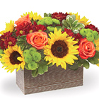 FTD® Happy Harvest Garden Deluxe