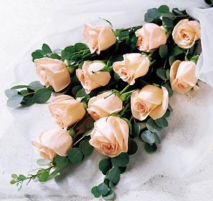1-800-FLORALS coupon: FTD® Delightful Dozen Roses