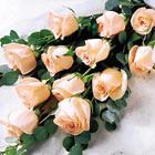 FTD® Delightful Dozen Roses