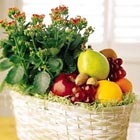FTD® Fruits and Flowers Basket